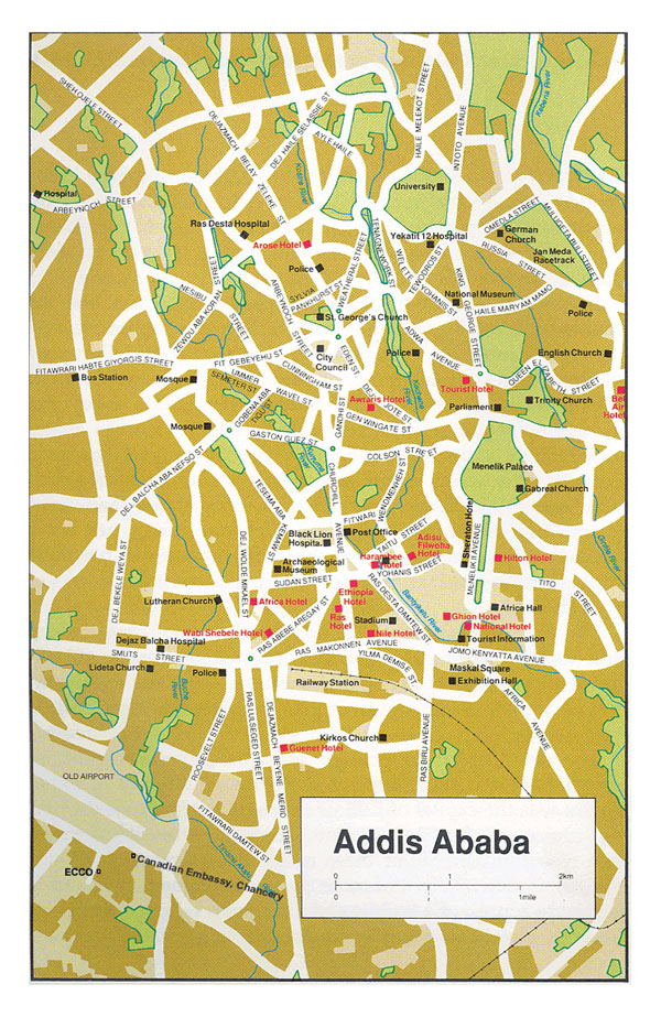 Roads map of Addis Ababa city with street names.