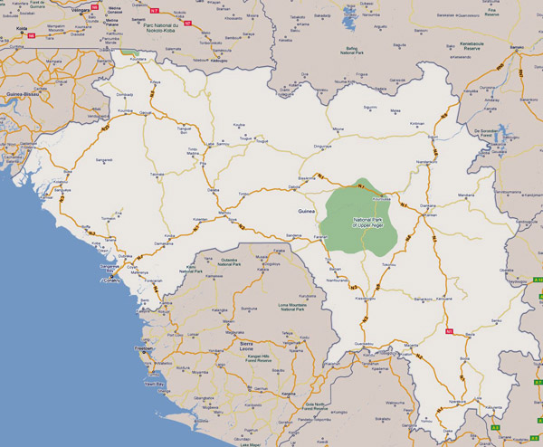 Road map of Guinea with cities. Guinea road map with cities.