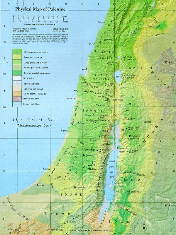 Detailed physical map of Palestine. Palestine detailed physical map.