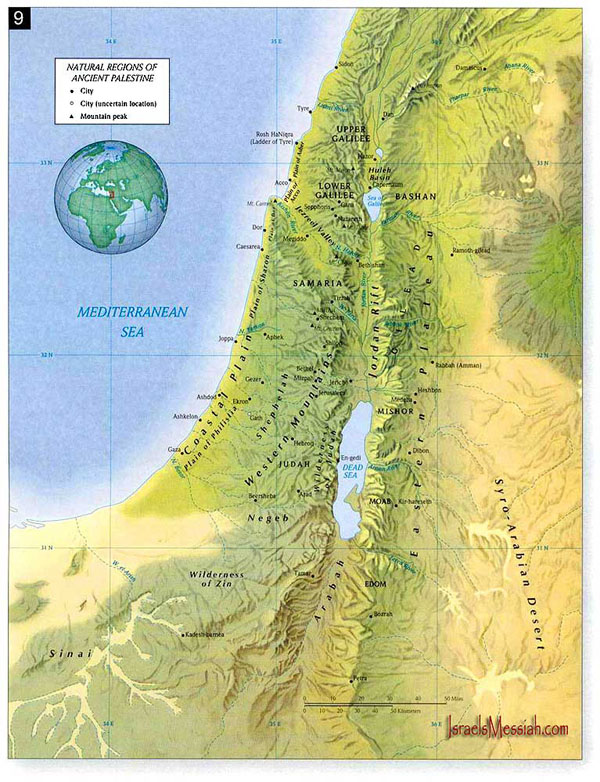 Detailed topographical map of Palestine. Palestine detailed topographical map.